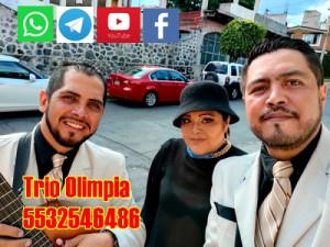 trio musical ciudad de mexico contrataciones
