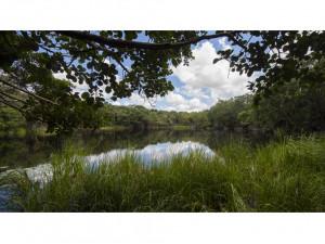 Rancho con cenote en Yucatán