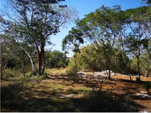 Terreno ejidal chablekal (5154mts)