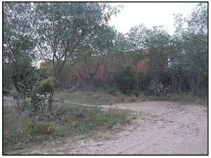 Terreno en Venta para vivienda o bodegas Lermas HZ