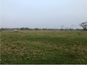 Rancho en venta 24 hectáreas a orilla de carretera Vhs...
