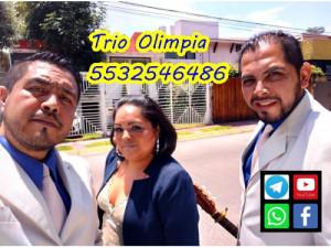 trio,trios,trio musical en Merced Gomez Benito Juarez C...