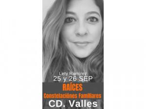 Constelaciones Familiares | Cd. Valles