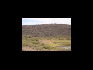 Rancho 250 hectareas en Jalisco