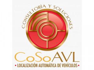 Consultoría y Soluciones AVL