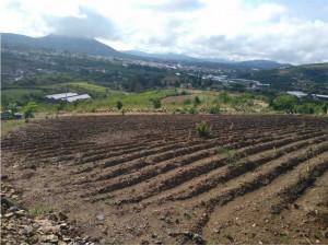 Bonito rancho de 7 hectareas en la comunidad Tonatico E...