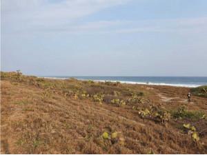 Playa en Venado/4500 M² /Frente de playa