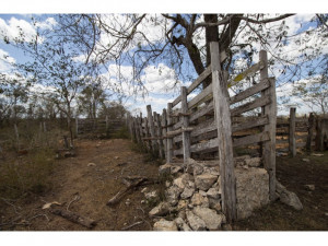 Rancho en venta en Chechmil Yucatán