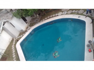 RENTA - Alberca para escuela de natación