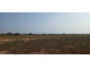 Guapinol/8 hectáreas a una cuadra de la playa/