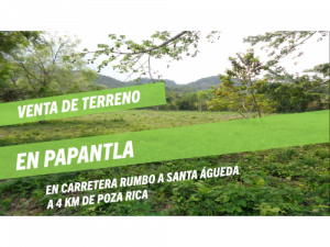 Venta Terreno 13,000 m2 EN PAPANTLA-POZA RICA VERACRUZ