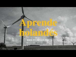 Aprende holandés con maestros nativos expertos