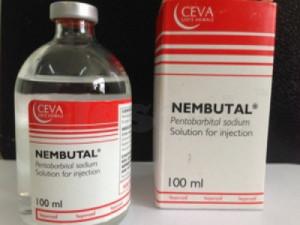 Nembutal puro (pentobarbital sódico)